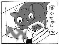 ぼんたん2&のせかぶ新隊員&お知らせ_a0064067_245133.jpg