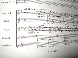 ラフマニノフ交響曲ピアノソロバージョン編曲 やっと仮完成!_e0030586_1034278.jpg