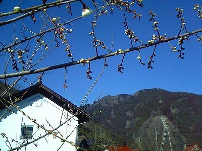 山里は静かなり・・・_c0060919_14523258.jpg