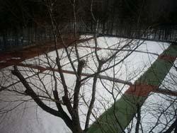テニスコートの除雪_f0146620_17121811.jpg