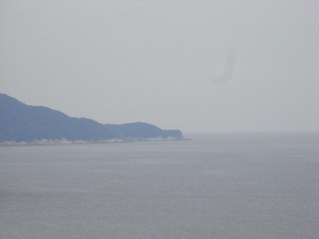 3月16日(日) ♪鹿~児島~から船~に乗ってど~こに着~いた?♪_d0082944_23273827.jpg