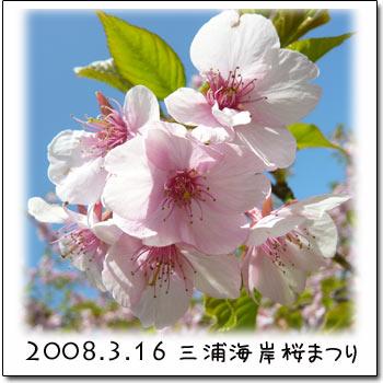 b0024183_18452434.jpg