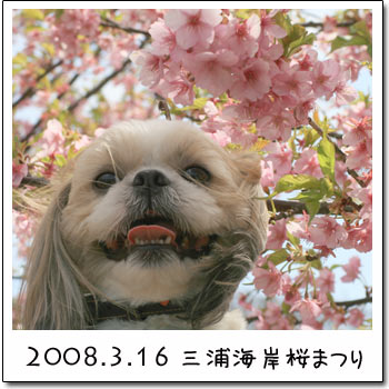 b0024183_1942743.jpg