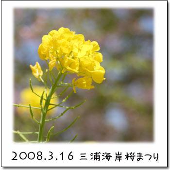 b0024183_1963245.jpg