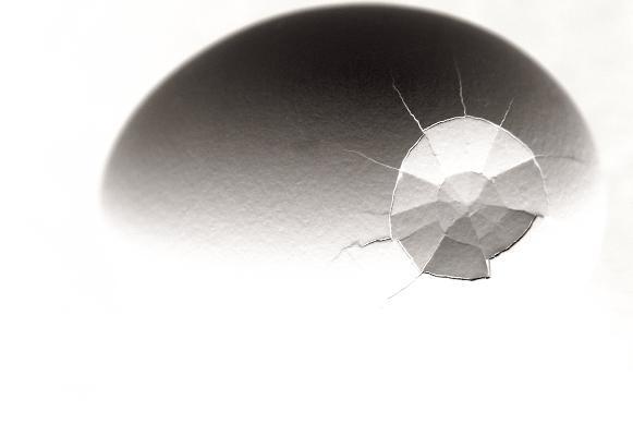 山海塾公演 <卵熱 ― 卵を立てることから ― > 【DVD】_f0155808_1165295.jpg