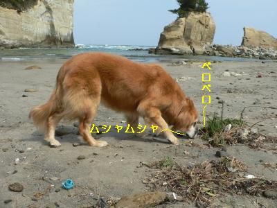 f0118135_15344331.jpg