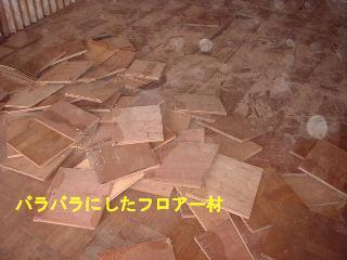 f0031037_1734983.jpg