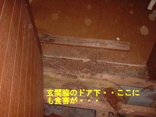 f0031037_17364587.jpg
