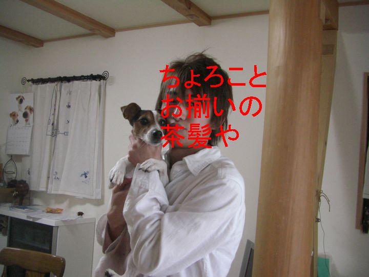 f0053952_1053259.jpg