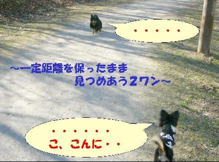 d0089861_16571997.jpg