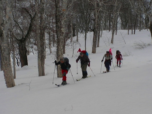 3月16日、目国内岳で山スキー_f0138096_1636093.jpg