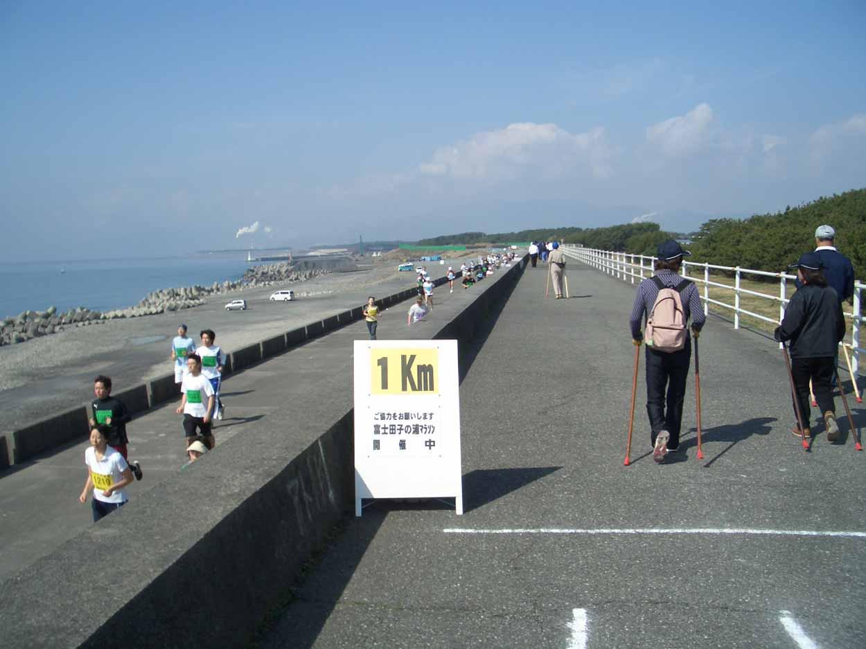 ポールウォーキングで参加した「富士田子の浦マラソン大会」_f0141310_23332948.jpg