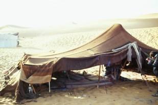 うっちーモロッコ旅行記Vol.4~サハラ砂漠編Ⅱ~ _a0104621_15152439.jpg