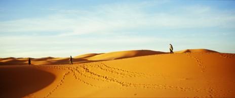 うっちーモロッコ旅行記Vol.4~サハラ砂漠編Ⅱ~ _a0104621_1518054.jpg