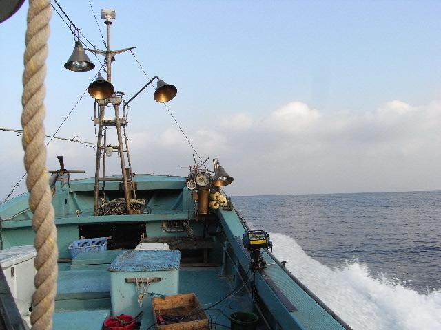 3月17日(月) This is ザ・遠洋漁業_d0082944_13154886.jpg