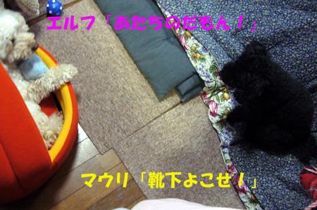 d0070047_22315980.jpg