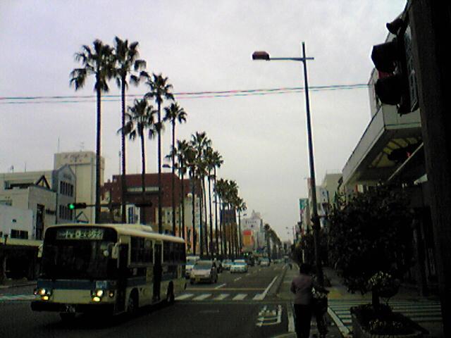 Miyazaki-city,  宮崎市_e0142585_203892.jpg