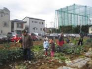 109号:平成20年度 体験型農園の利用者を募集します_e0100687_1611695.jpg