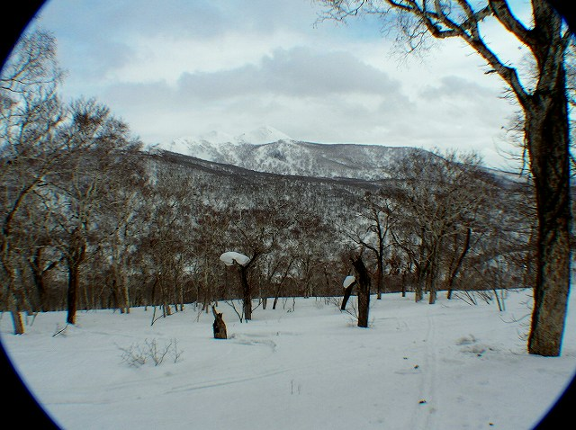 3月16日、目国内岳山スキーその2_f0138096_14175832.jpg
