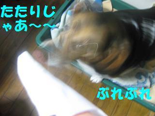 d0104209_20294936.jpg