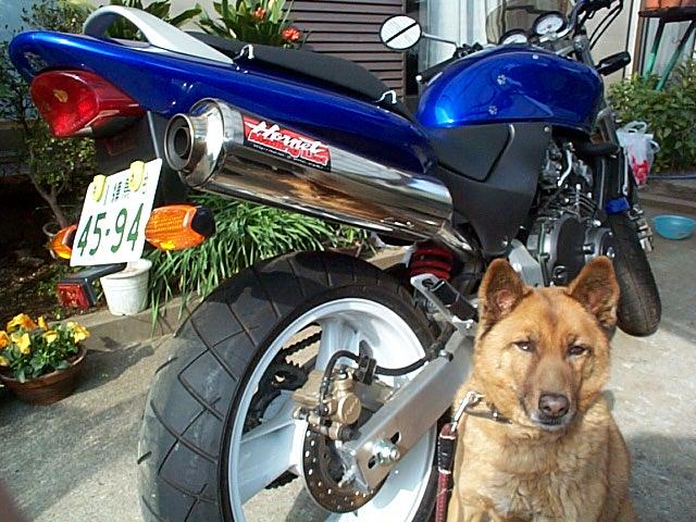 過去のバイク その3_f0141609_2210972.jpg