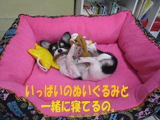 f0149420_141057.jpg