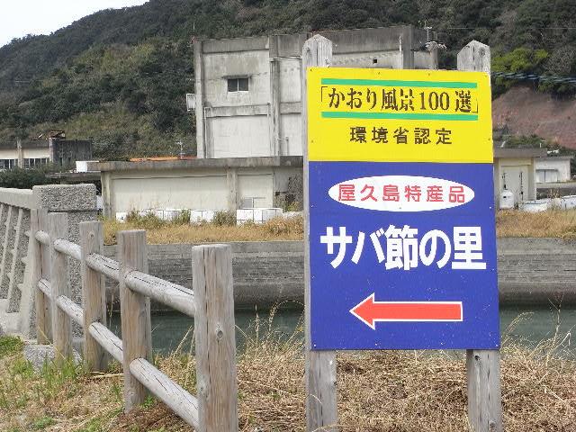 3月17日(月) This is ザ・遠洋漁業_d0082944_139294.jpg