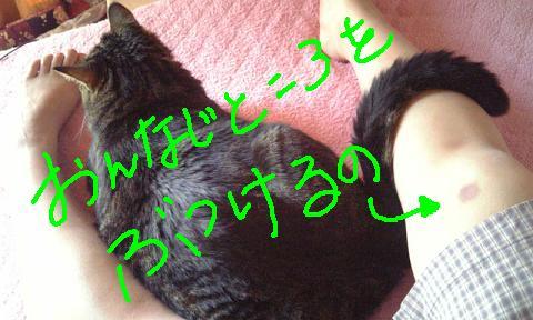 b0122260_2020323.jpg