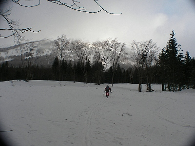 3月17日、ハプニングの羊蹄山山スキー_f0138096_1257252.jpg