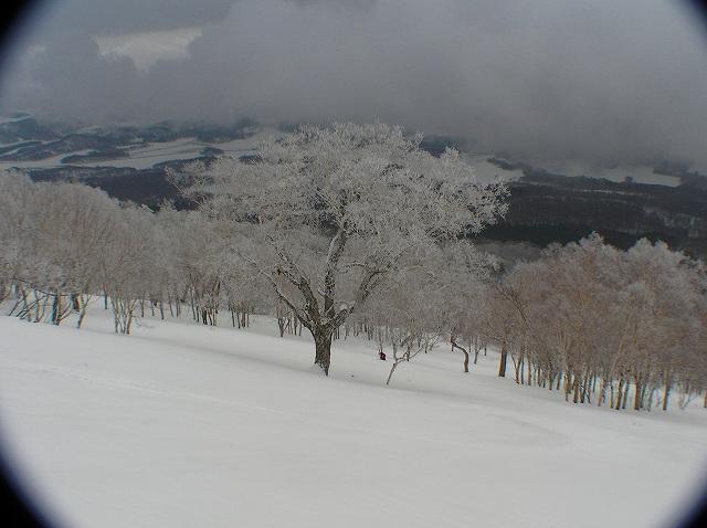 3月17日、ハプニングの羊蹄山山スキー_f0138096_1258448.jpg