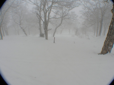 3月17日、ハプニングの羊蹄山山スキー_f0138096_13113910.jpg