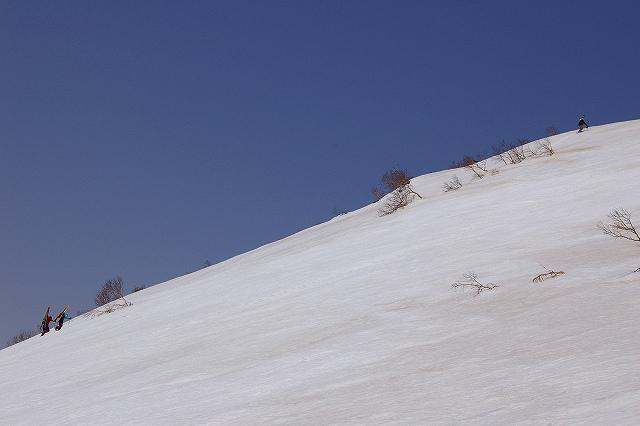 3月17日、羊蹄山山スキー写真編_f0138096_13261216.jpg