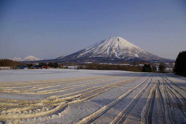 3月17日、羊蹄山山スキー写真編_f0138096_13351287.jpg