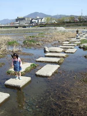 鴨川に 春きたりなば ひと集う_c0069903_7335232.jpg