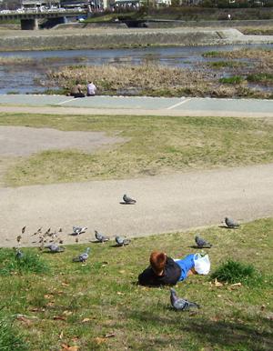 鴨川に 春きたりなば ひと集う_c0069903_7343039.jpg