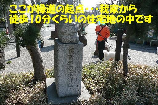 f0121712_22261168.jpg