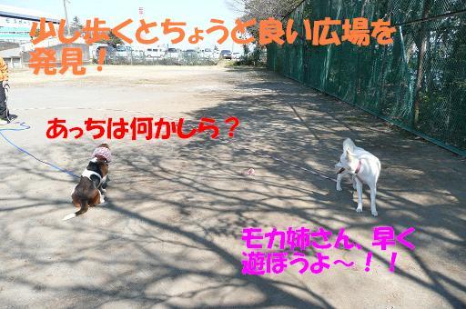 f0121712_22271852.jpg