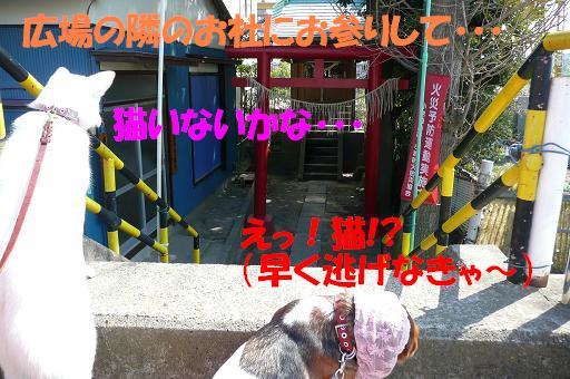 f0121712_2227853.jpg