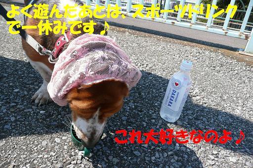 f0121712_2228367.jpg