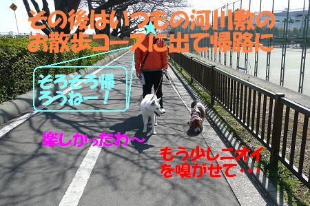 f0121712_22284451.jpg
