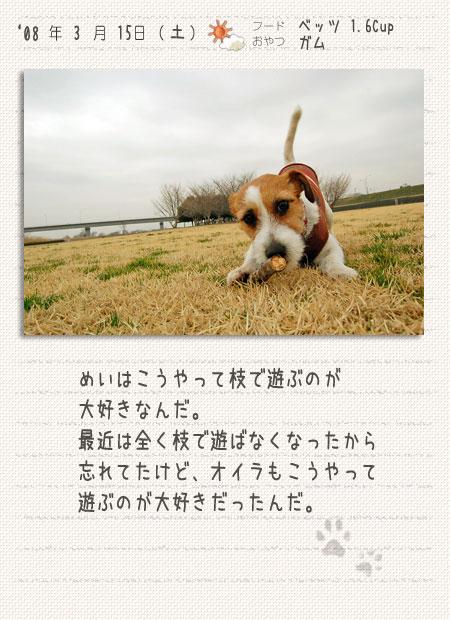 b0040323_14561483.jpg