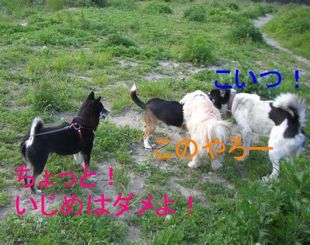 f0053952_20134100.jpg