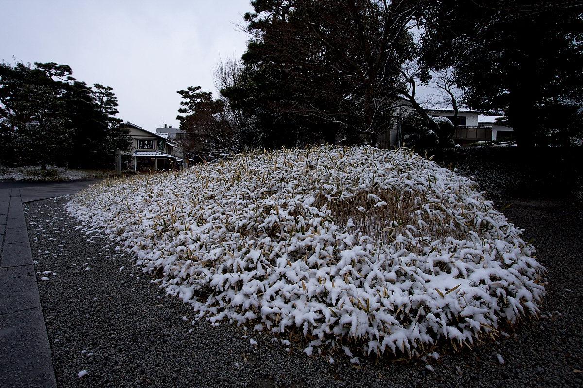 京都 雪景色 <宇治> 1 _f0021869_20114036.jpg