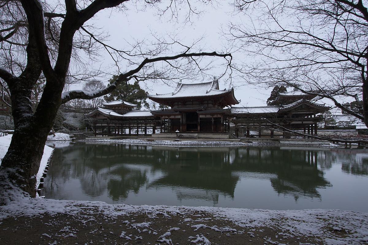 京都 雪景色 <宇治> 1 _f0021869_20174766.jpg