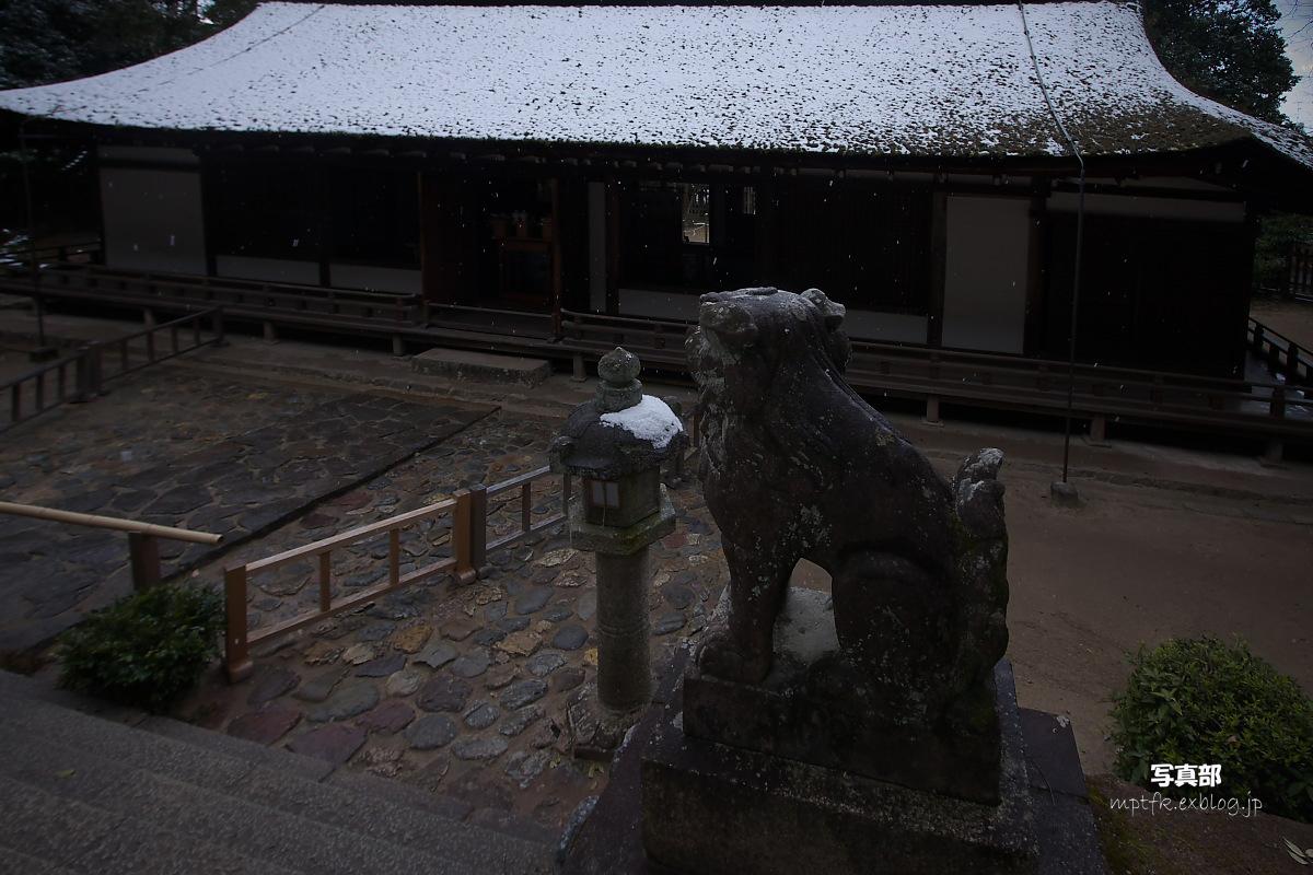京都 雪景色 <宇治> 3_f0021869_21105294.jpg
