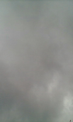 雨…雨…。_e0051174_851690.jpg