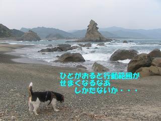 d0104209_1952268.jpg