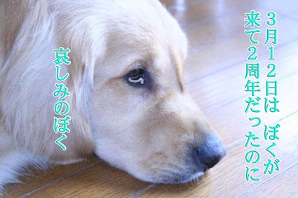 f0134923_2144378.jpg