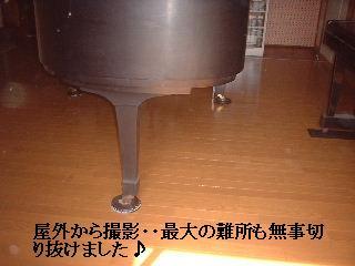 f0031037_1439535.jpg