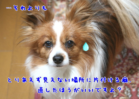 d0013149_1185634.jpg